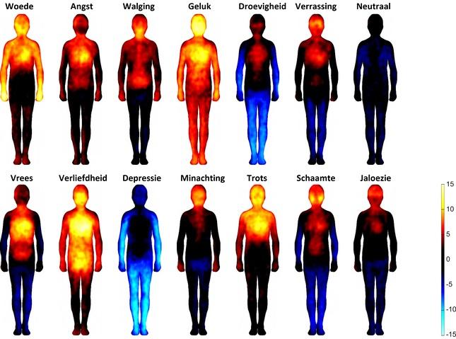 emoties_in_je_lichaam_weergave